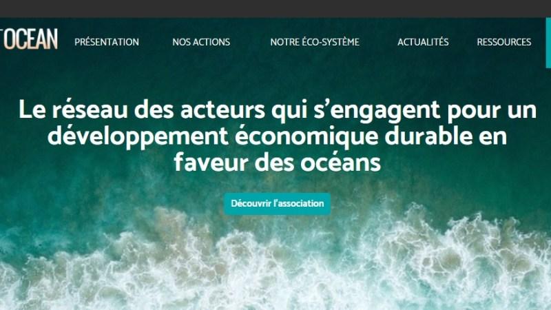 L'association RespectOcean a un nouveau site internet pour mettre ses actions en valeur