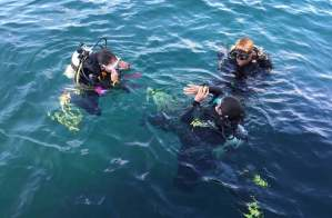 Our two avid divers with Markus