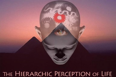 Hierarchic Perception of Life
