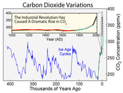 Fossil fuels CO2-variation