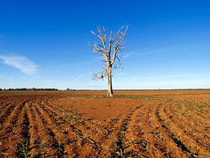Cost to stop Global Warming. Climate change - drought