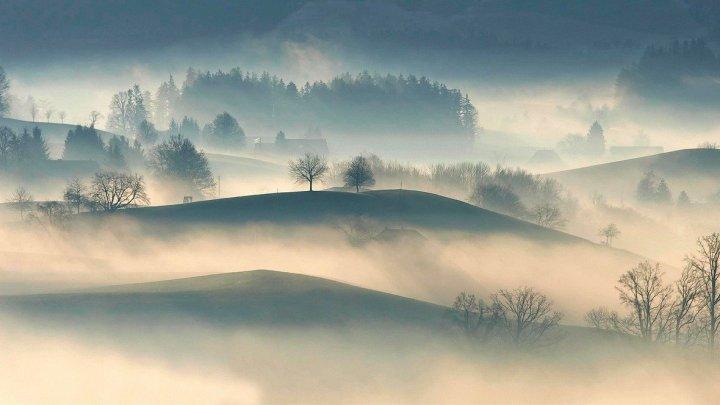 Vue panoramique de la nature