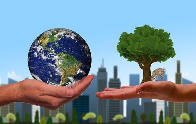 Rétablir l'équilibre écologique