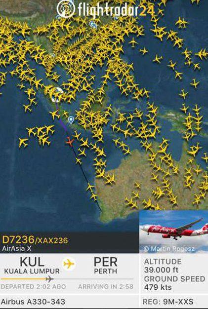 Vliegen_Australiers