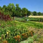 Preguntas y respuestas sobre Agricultura ecológica