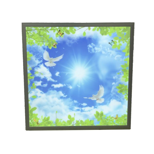 600x600mm bird panel 7000K daylight 48W