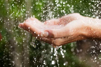 agua-de-chuva-lei-araraquara-ilustra