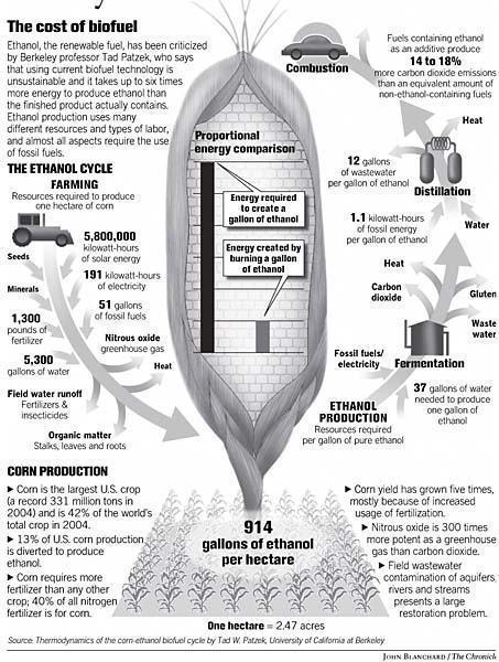 Impactos da produção de etanol de milho