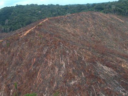 Desmatamento, em foto de arquivo MMA