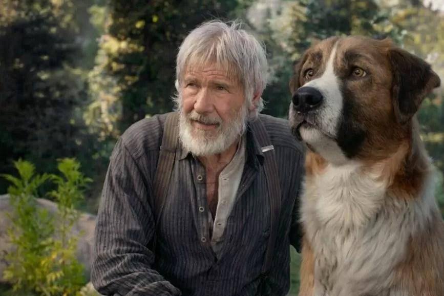 Il richiamo della foresta box office Italia