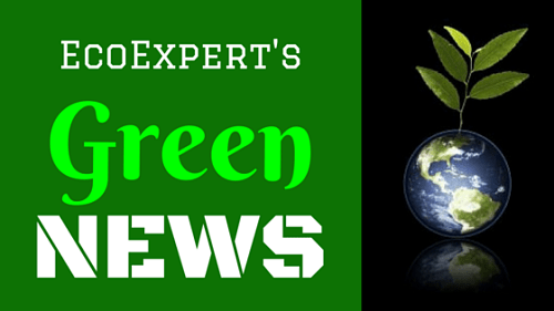 eco expert's environment news