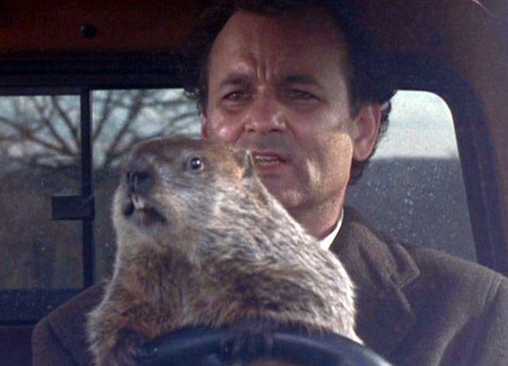 groundhog day repeats