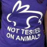 not tested animals logo