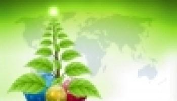 Eco Friendly Christmas fun family christmas ideas - 6 tips - ecofriendlylink
