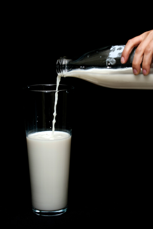 milk or non dairy milk