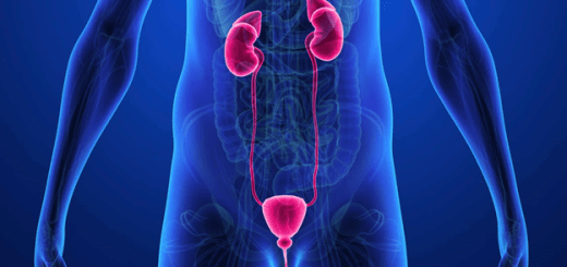 top facts about urology