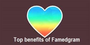 Benefits of Famedgram