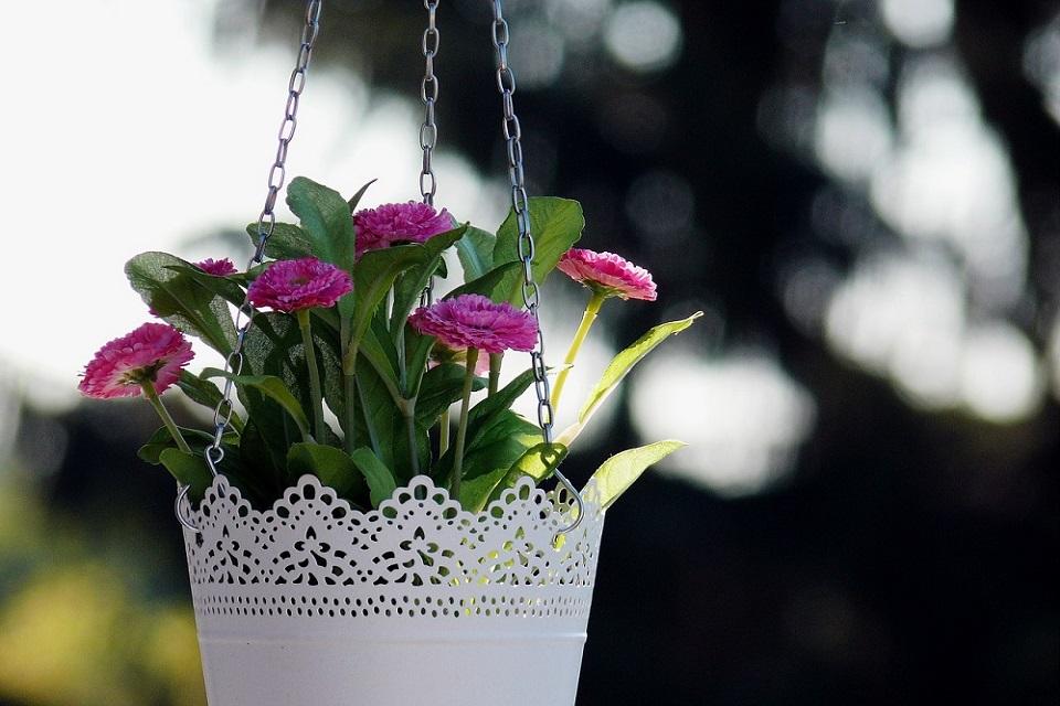 hanging planters australia