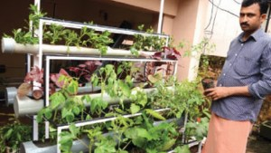 small scale vertical farming in india