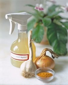 Onion-Garlic-Pesticide