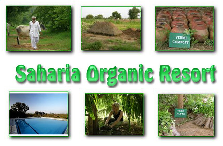 Saharia Organic Resort
