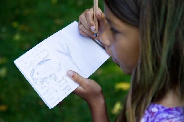 parenting visual art books