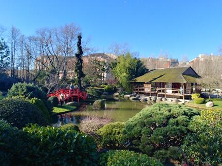 Sayonara, joli jardin japonais!