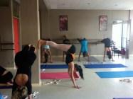 Yoga Iyengar avec Jocelyne Haussaire (4).resized