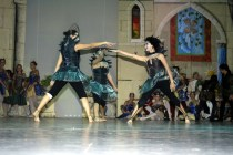 spectacle 2006 184belleauboisdormant