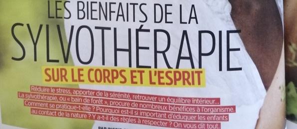 Les bienfaits de la sylvothérapie – Top santé mai 2020