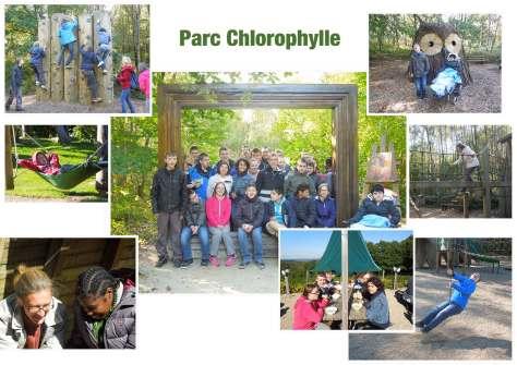 2015-10---Chlorophylle