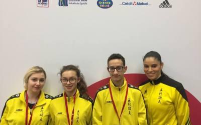 Coupe de France Wushu Taolu 2018 Evreux