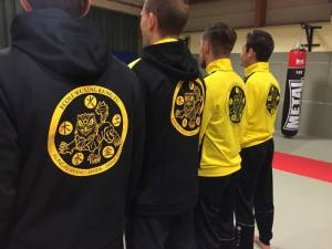Ecole Wuxing BOusse Cours de Kung-Fu Wushu Adultes