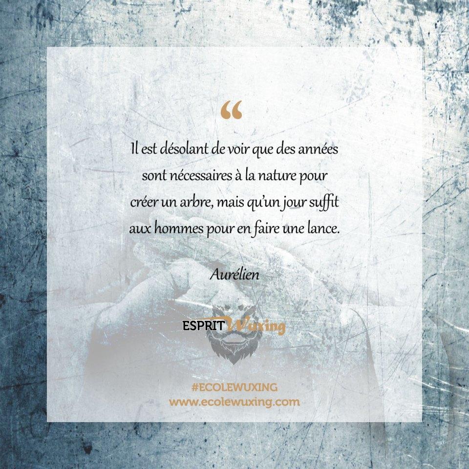 Citation Aurélien Meyer Esprit Wuxing Nature Homme Guerre