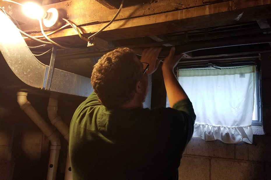 Energy auditor puts insulation around pipes in basement