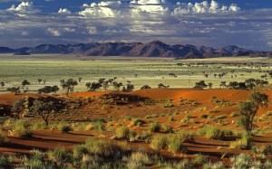 World_Africa_African_savanna_019014_