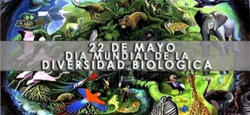 Dia internacional de la diversidad biológica