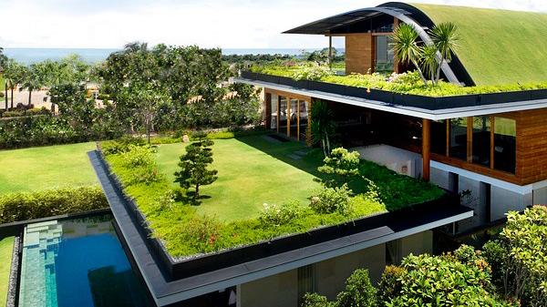 Qu es un techo verde ecolog a y medio ambiente for Techos y paredes verdes
