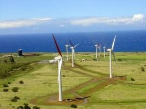 windfarmtunisia