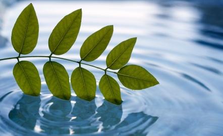 waterconservationarabs