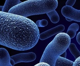 microbial-biodiversity