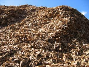 biomass-resources