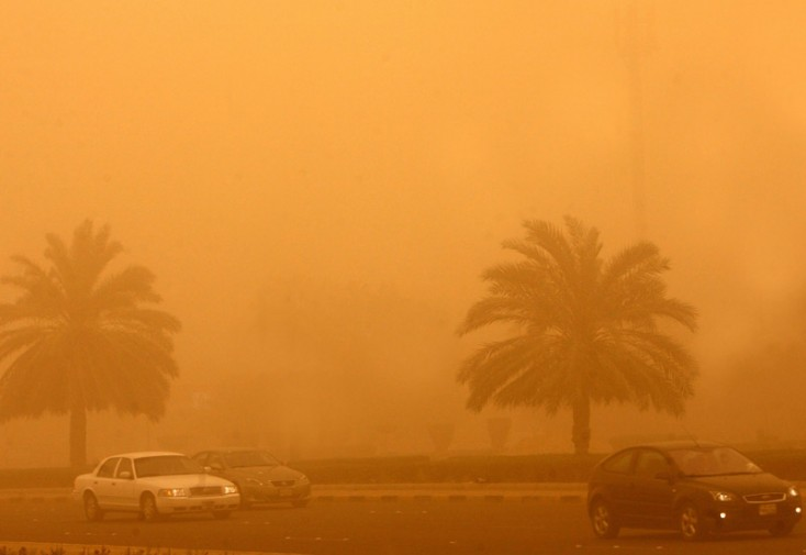 Mitigating the Effects of Sand and Dust Storms   EcoMENA