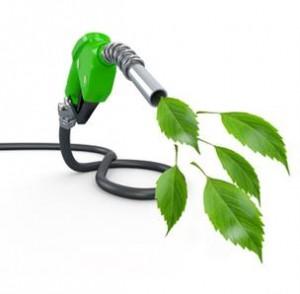 biofuelsjordan