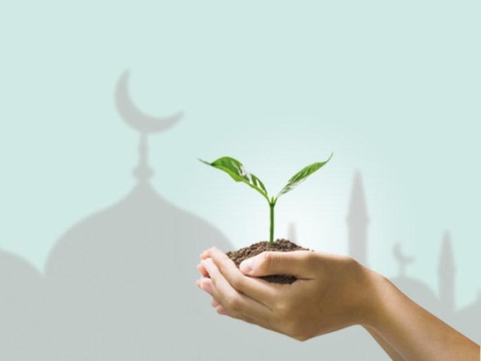 green-islamic-finance