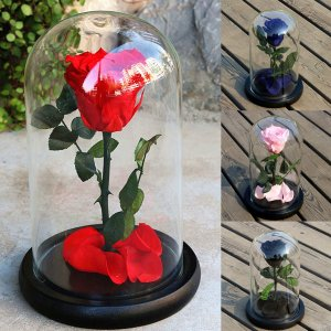 Forever Rose Flower Valentine's Day Festive Preserved Rose Gifts in Glass Decorations