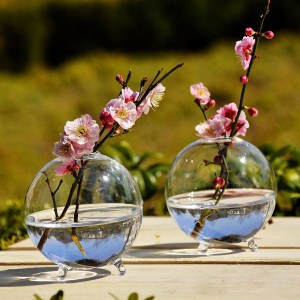 Hydroponic Plants Hanging Ball Shape Glass Vase Home Garden Decor