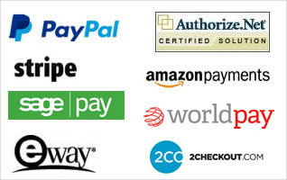 Integrated payment processors