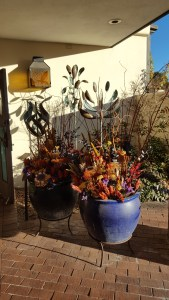 Dried arrangements in large pots