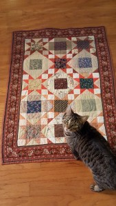 A striped cat with a quilt featuring warm orange tones.